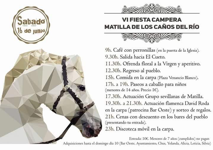 Fiesta Campera 2018