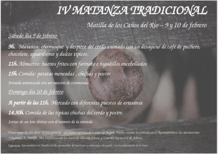 IV Matanza Tradicional en Matilla