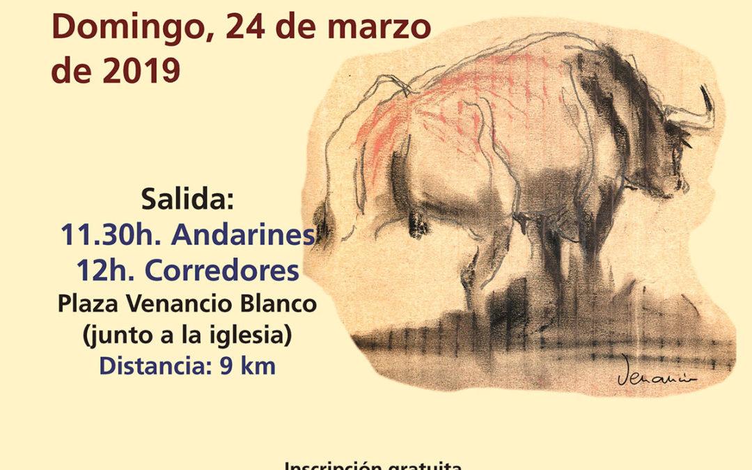 IV Carrera por el campo del toro bravo Matilla de los Caños del Río